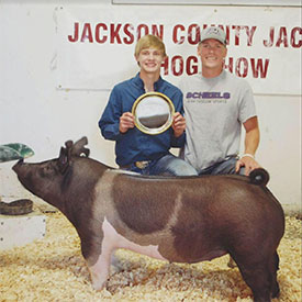 Bargfrede Show Pigs :: Winners